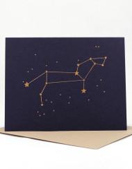 Constellation card, Leo