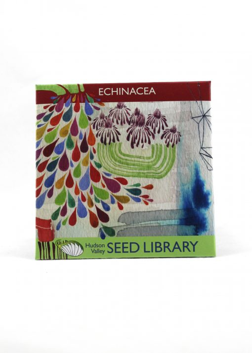 echinacea seed packet