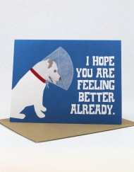 Dog with cone get well card