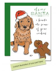 Dear Santa custom pet holiday cards