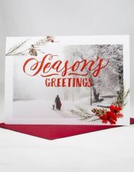 Season's greetings photo card